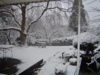 Le jardin de notre auberge de jeunesse a Kyoto sous la neige