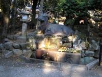 Jardin du parc historique de Nara