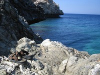 Cap Greko