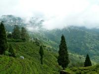 Vu de Darjeeling